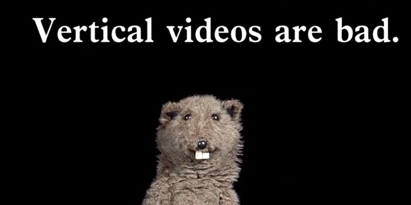 Say No To Vertical Videos